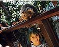 Kid and koala in Australia