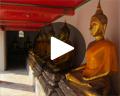 wat pho golden buddhas play video