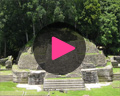 caracol video