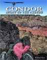 Condor: Spirit of the Canyon kids books