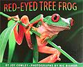 Red-Eyed Tree Frog nature kids costa rica