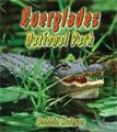 Everglades National Park kids florida