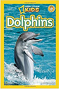 dolphins kids book