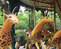 dodo carousel