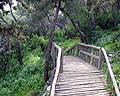 Filopappos Hills