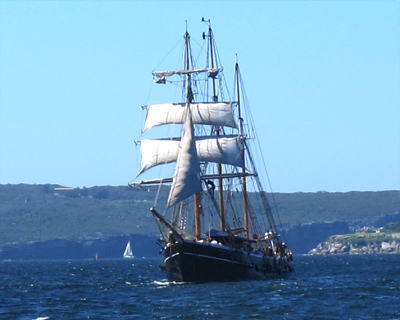 sailing ship sydney harbour