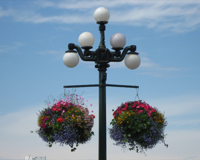 colorful lamp posts victoria british columbia