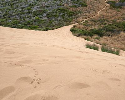 sand dunes montana de oro morro bay california
