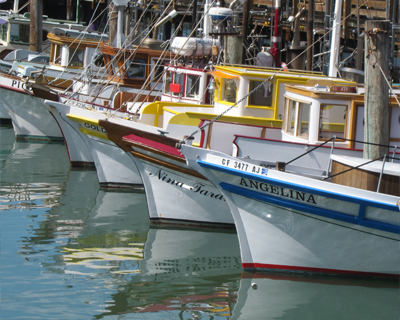 fishermans wharf fishing boats
