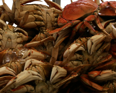 fresh cooked dungeness crab fishermans wharf