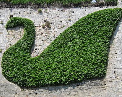 bergamo swan topiary old city walls