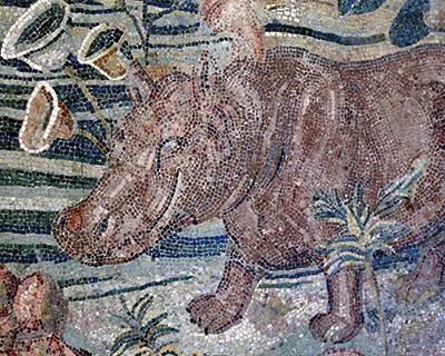 hippo nile scene mosaic palazzo massimo alle terme