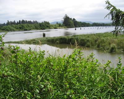 canoe landing fort clatsop