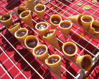 maple cones