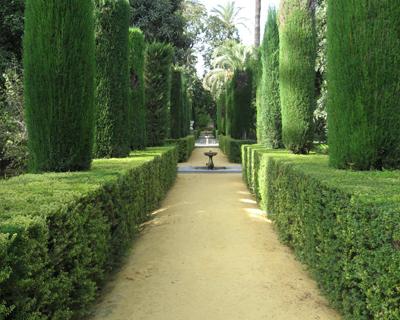 the maze alcazar gardens seville