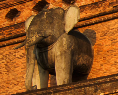 elephant chedi luang