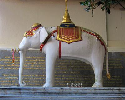 thailand wat doi suthep white elephant