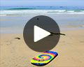 la jolla video travel for kids