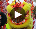 yellow lion dance
