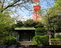 Zojo-ji temple and Tokyo Tower